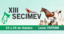 banner-secimev-2017-small